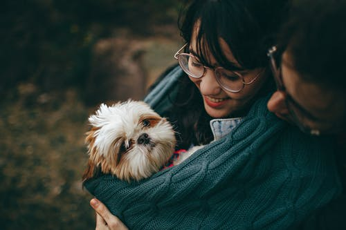 All You Need to Know About Pet Vaccinations